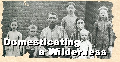Domesticating a Wilderness